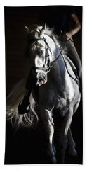 Beach Towel featuring the photograph Midnight Ride by Wes and Dotty Weber
