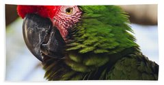 Military Macaw Parrot Beach Towel