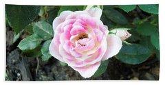 Miniature Rose Beach Sheet