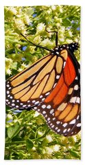 Monarch An Wildflowers Beach Towel