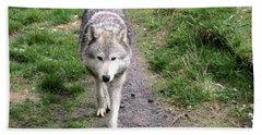 Montana Gray Wolf 02 Beach Towel