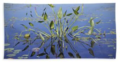 Morning Reflection Beach Towel by Eunice Gibb