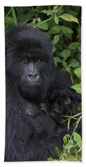 Mountain Gorilla Mother And Infant Parc Beach Towel