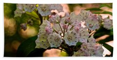 Mountain Laurel Flowers 2 Beach Sheet