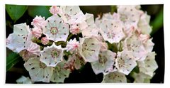Mountain Laurel Flowers Beach Towel