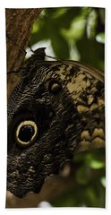 Mournful Owl Butterfly Beach Towel