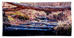 Beach Towel featuring the photograph Natural Spring Beauty  by Peggy Franz