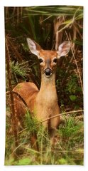 Oh Deer Beach Towel