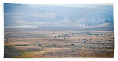 Beach Sheet featuring the photograph Oh Home On The Range by Cheryl Baxter