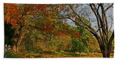 Old Tree And Foliage Beach Towel by Todd Breitling
