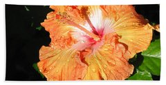 Beach Towel featuring the photograph Orange Hibiscus After The Rain 1 by Connie Fox