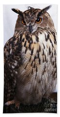 Orange Owl Eyes Beach Sheet