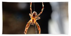 Orange Spider Beach Towel