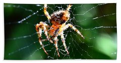 Beach Towel featuring the photograph Orb Weaver And Lunch by Chriss Pagani