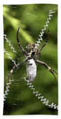 Beach Sheet featuring the photograph Orb Weaver by Joy Watson