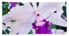 Orchids White And Purple Beach Towel by Steven Sparks