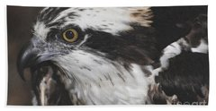 Beach Sheet featuring the photograph Osprey by Lydia Holly