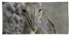 Beach Sheet featuring the photograph Ostrich by Heidi Poulin
