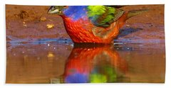 Painted Bunting Reflecting Beach Towel by Myrna Bradshaw