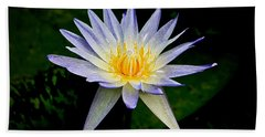 Painted Lily And Pads Beach Towel by Steve McKinzie