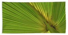 Beach Towel featuring the photograph Palm Leaf II by JD Grimes