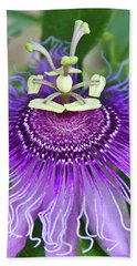 Beach Towel featuring the photograph Passion Flower by Albert Seger
