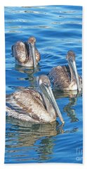 Beach Sheet featuring the pyrography Pelicans by Lizi Beard-Ward