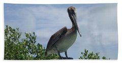 Perched Pelican Beach Towel