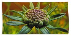 Beach Towel featuring the photograph Pinchshin Bud by Debbie Portwood