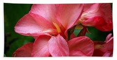 Pink Canna Beach Sheet