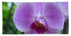 Pink Orchid Beach Sheet
