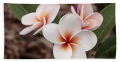 Beach Towel featuring the photograph Plumeria   Kona Hawii by James Steele