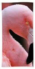 Portrait Of A Flamingo Beach Sheet