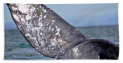 Beach Towel featuring the photograph Powerful Fluke by Don Schwartz