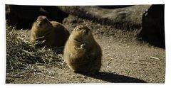 Prairie Dog Sees The Shadow Beach Sheet