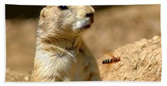 Prarie Dog Bee Alert Beach Sheet by LeeAnn McLaneGoetz McLaneGoetzStudioLLCcom