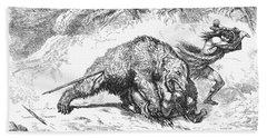 Prehistoric Bear Hunt Beach Towel