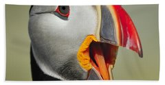 Puffin Portrait Beach Sheet