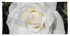 Pure White Rose Beach Towel