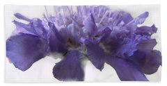 Beach Towel featuring the photograph Purple Pincushin by Debbie Portwood