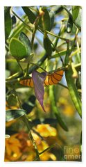 Purple Pink Green Chrysalis  Beach Towel