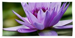 Purple Petals Water Lily Beach Sheet by Carol F Austin