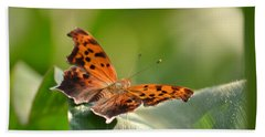 Beach Towel featuring the photograph Question Mark Butterfly by JD Grimes