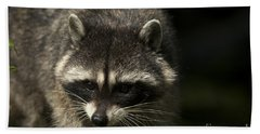 Raccoon 2 Beach Towel
