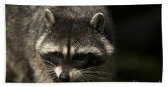 Raccoon 2 Beach Sheet