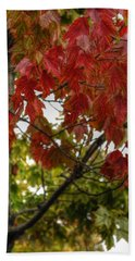 Beach Towel featuring the photograph Red And Green Prior X-mas by Michael Frank Jr