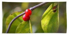 Red Fruits Beach Sheet