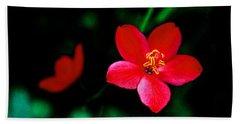 Red Petaled Dream Beach Sheet