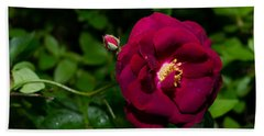 Red Rose In The Wild Beach Towel