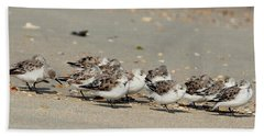 Resting Sandpipers Beach Towel